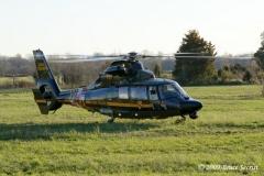 QAHVFC309&Horse_(14)