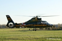 QAHVFC309&Horse_(17)