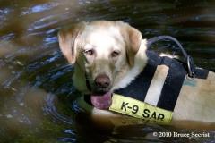 Search&Rescue-HorseShoeRd_0011