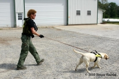 Search&Rescue-HorseShoeRd_0018