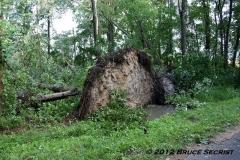 4-Tornado_0017